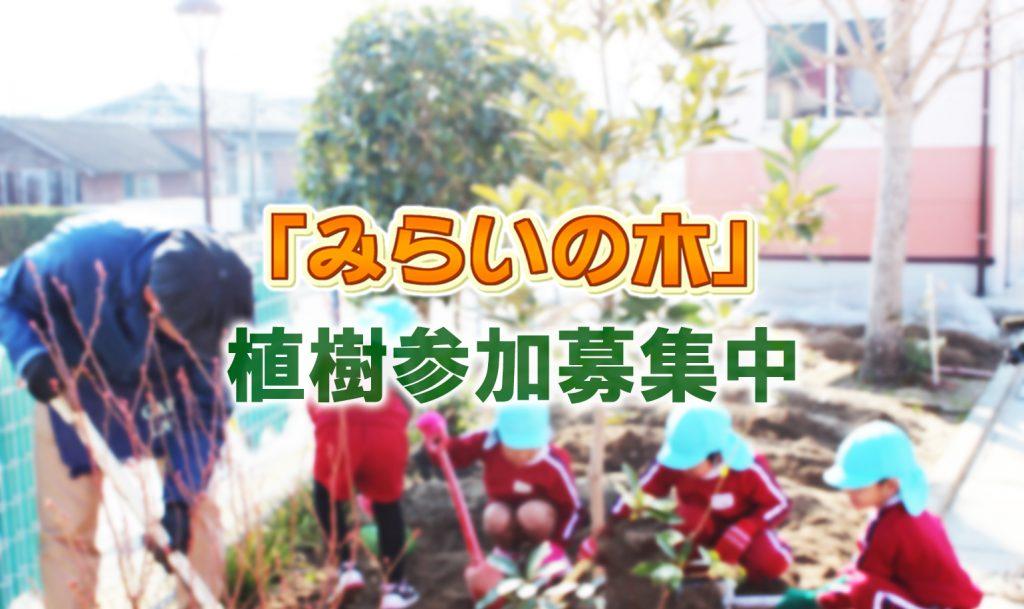 NCC長崎文化放送エコロジー宣言「みらいの木」
